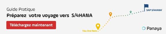 Prepping for S/4Hana Guide FR
